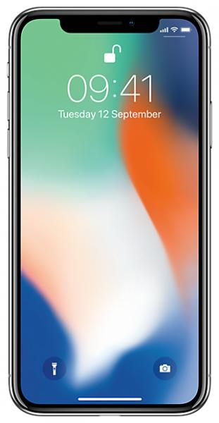 Apple iPhone X 256GB Space Gray (MQAF2RU/A)